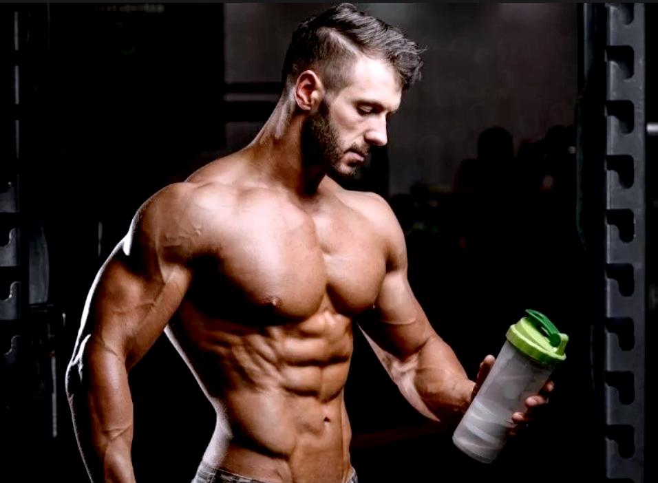 белки для спорта