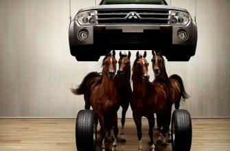 Почему мощность автомобиля измеряется в лошадиных силах